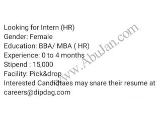 HR INTERN - Dipdag