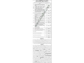 Chowkidar/Sanitary Workers/Mali/Naib Qasid/ Moazin/Cook/Generator Operator/Imam Masjid /PC Hardware Tech/Clerk/ Auditor/Accountant/ Stenographers