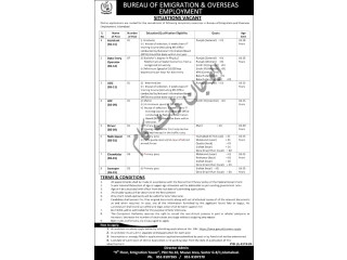 DRIVER// CHOWKIDAR// SWEEPER //LDC/UDC// DATA ENTRY OPERATOR// ASSISTANT |Government Jobs in Pakistan |