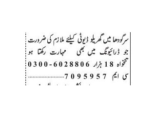 DRIVER (Domestic) Required - |Jobs in Sargodha| | Jobs in Punjab|