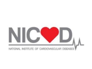 NICVD National Institute of Cardiovascular Diseases-  Jobs in Sindh  Jobs in Pakistan 