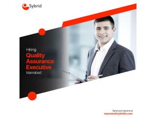Quality Assurance Executive - Sybrid