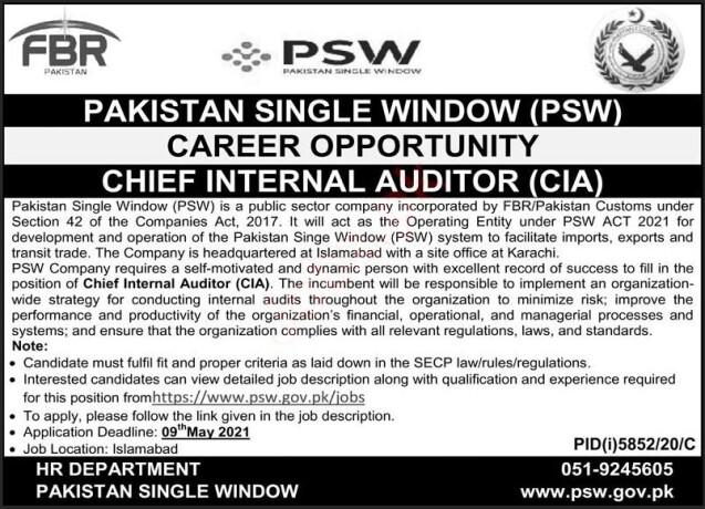 chief-internal-auditor-cia-pakistan-single-window-psw-jobs-in-karachi-jobs-in-pakistan-government-jobs-big-0