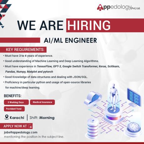 infrastructure-engineer-aiml-engineer-financial-analyst-appedology-jobs-in-karachi-big-2