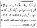 coral-draw-photoshop-inpage-facebook-online-jobs-in-karachi-jobs-in-pakistan-small-0