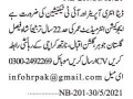 data-entry-it-technician-jobs-in-karachi-it-jobs-small-0