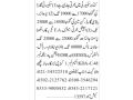 security-guard-supervisor-body-guard-gunman-kundoor-security-security-guards-jobs-in-karachi-jobs-in-karachi-small-0