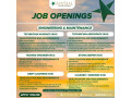 tech-avionics-tech-aerospace-trainee-engineering-store-keeper-deep-cleaners-cleaner-sweeper-air-sial-pakistan-airline-ayyr-syal-small-1