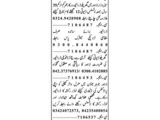 DRIVERS ( 4 Positions) -  LOADER RICKSHAW DRIVER    Jobs in Lahore    Driver Jobs in Lahore  Driver Jobs  